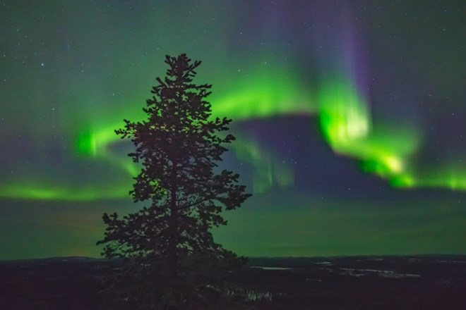 The Arctic Gateway Tromso Northern Lights Tour In Norway