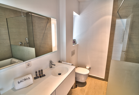 Boutique Suite - Bathroom - Copy.jpg