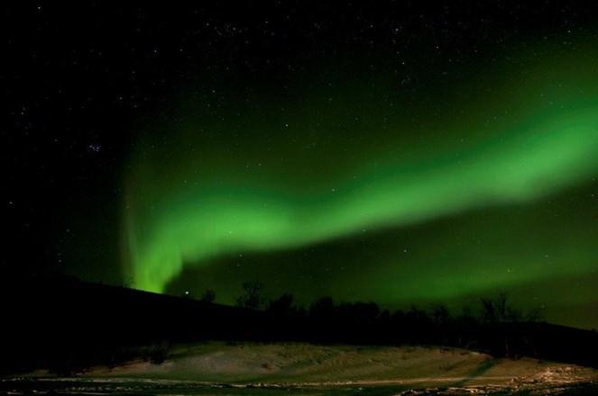 Northern Lights By Cruise Railway And Dog Sledding